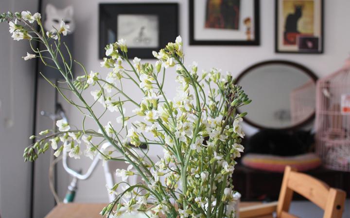 Hilos y madera: la sorpresa de la flor de la coliflor y del brocoli